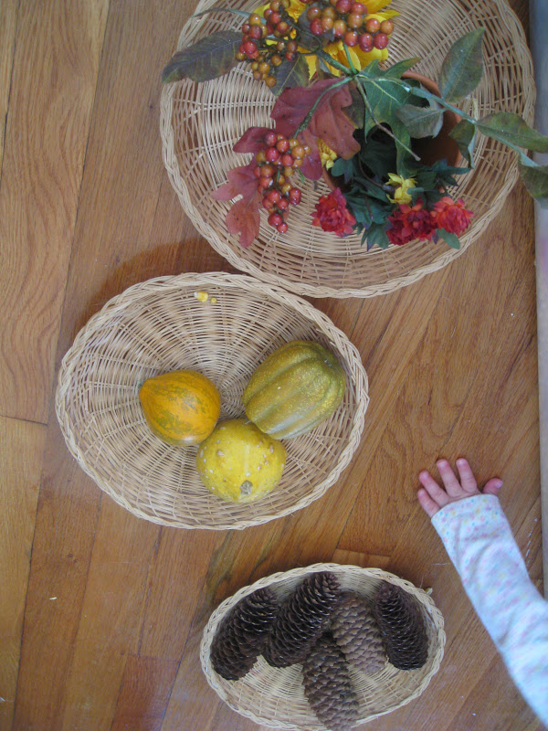Sensory bin ideas for Thanksgiving include sorting items by texture, shape, and color.