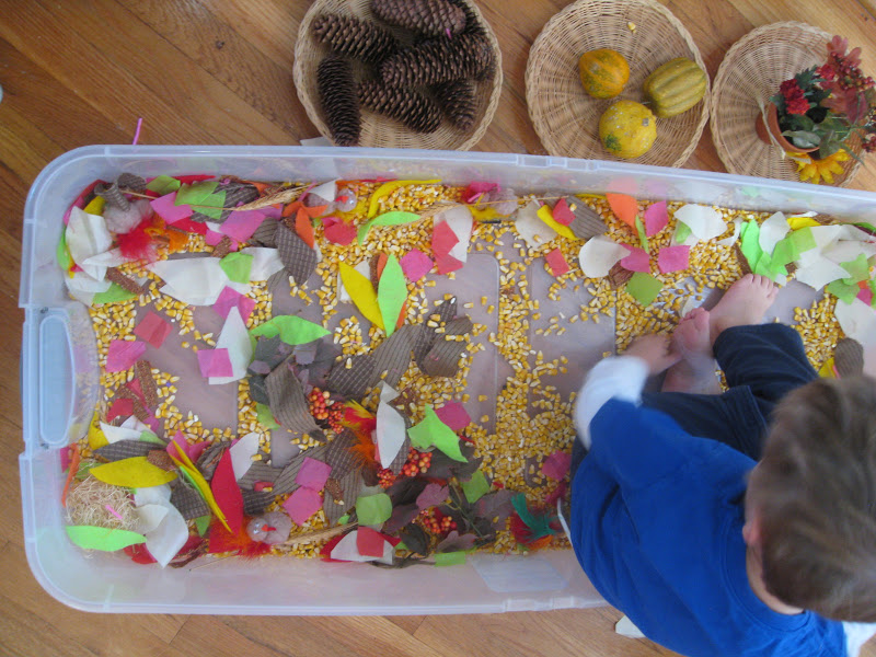 Thanksgiving sensory ideas include this sensory bin with items to scoop and manipulate.