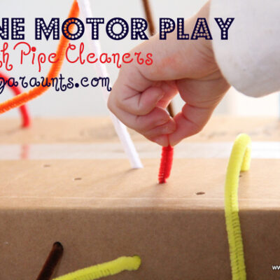 Using Pipe Cleaners for Fine Motor Development