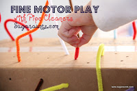 Use pipe cleaners to work on fine motor skills.