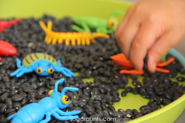 B is for beans and bugs. Sensory bin for kids