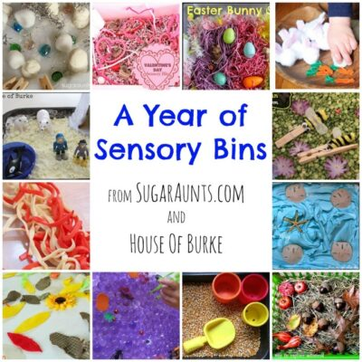 Sensory Bins for a Year