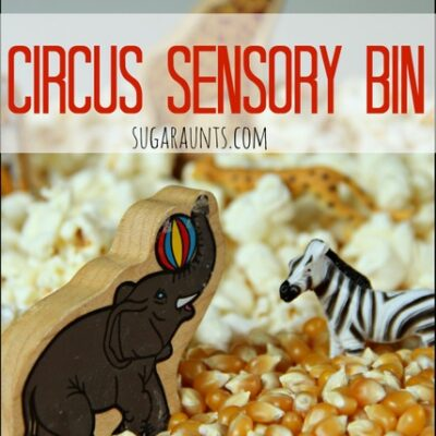 Circus Sensory Bin