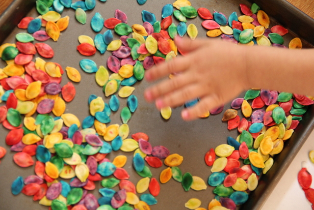 Kids will love using dyed pumpkin seeds in sensory play.