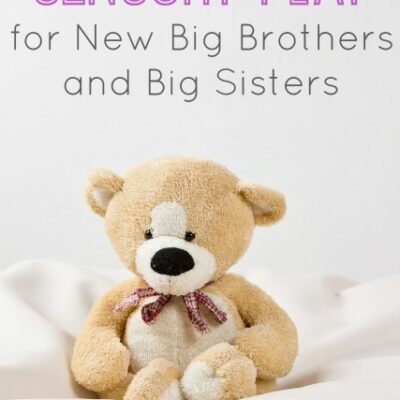 New Baby Sensory Play for Siblings
