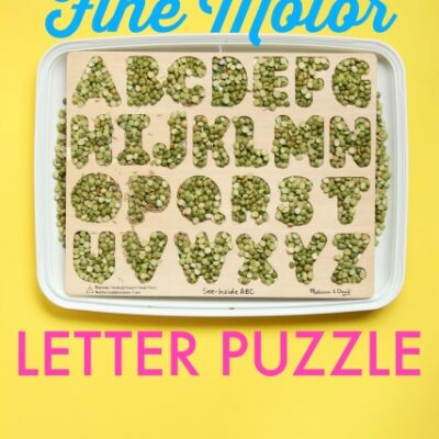 In Hand Manipulation Letter Puzzle Activity