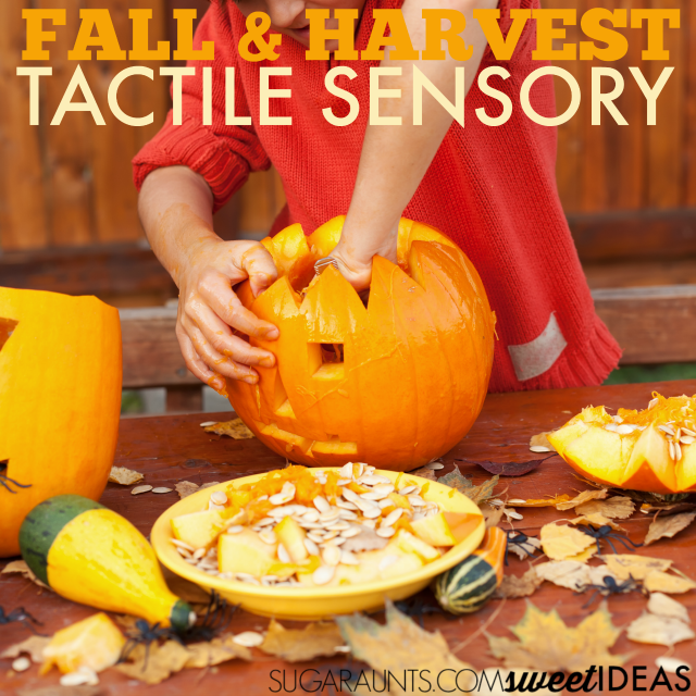 Help kids tolerate tactile sensory play with these Fall tactile sensory activities.