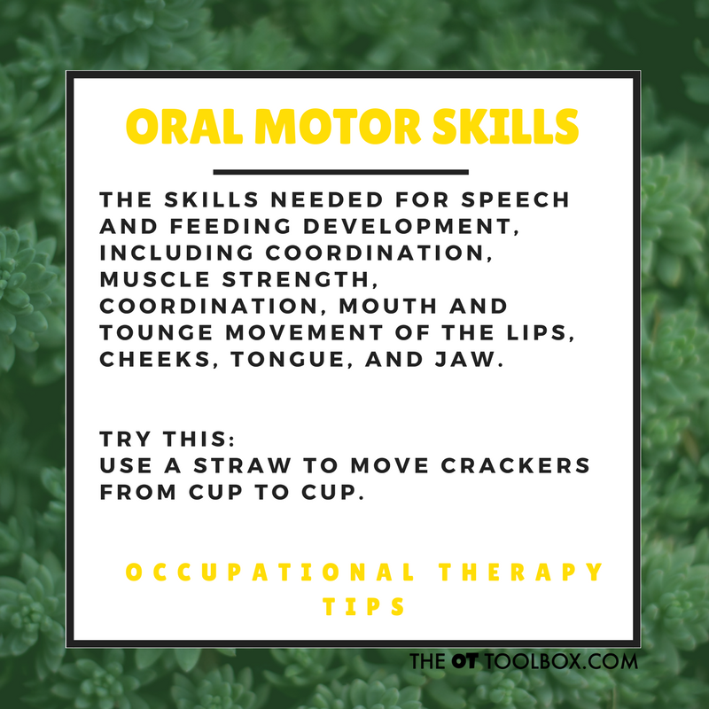 Use animal crackers  oral motor exercise