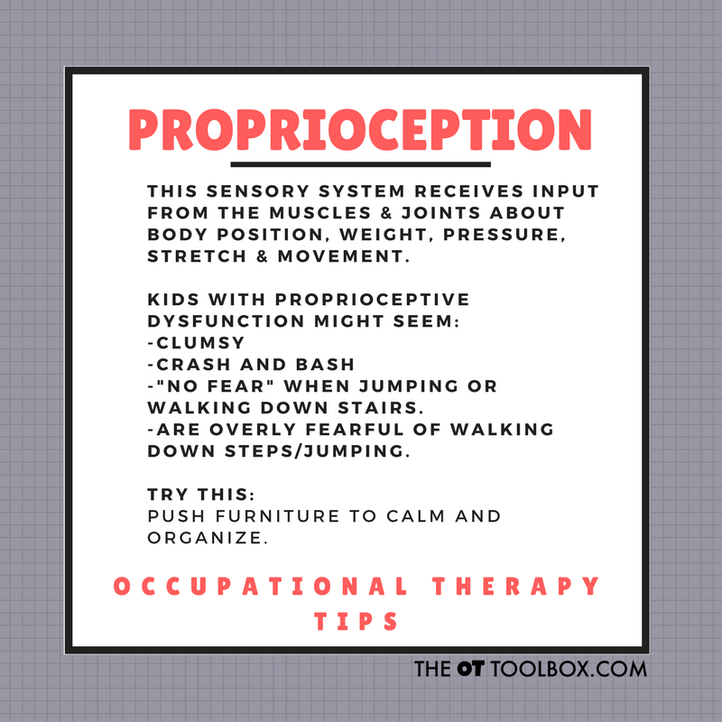 Proprioception activities