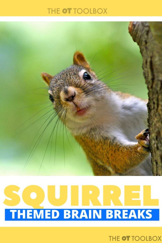 squirrel brain breaks for a squirrel themed activity for kids