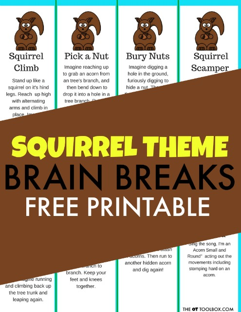 Squirrel brain breaks