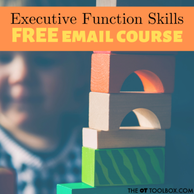 Executive Functioning Skills Course