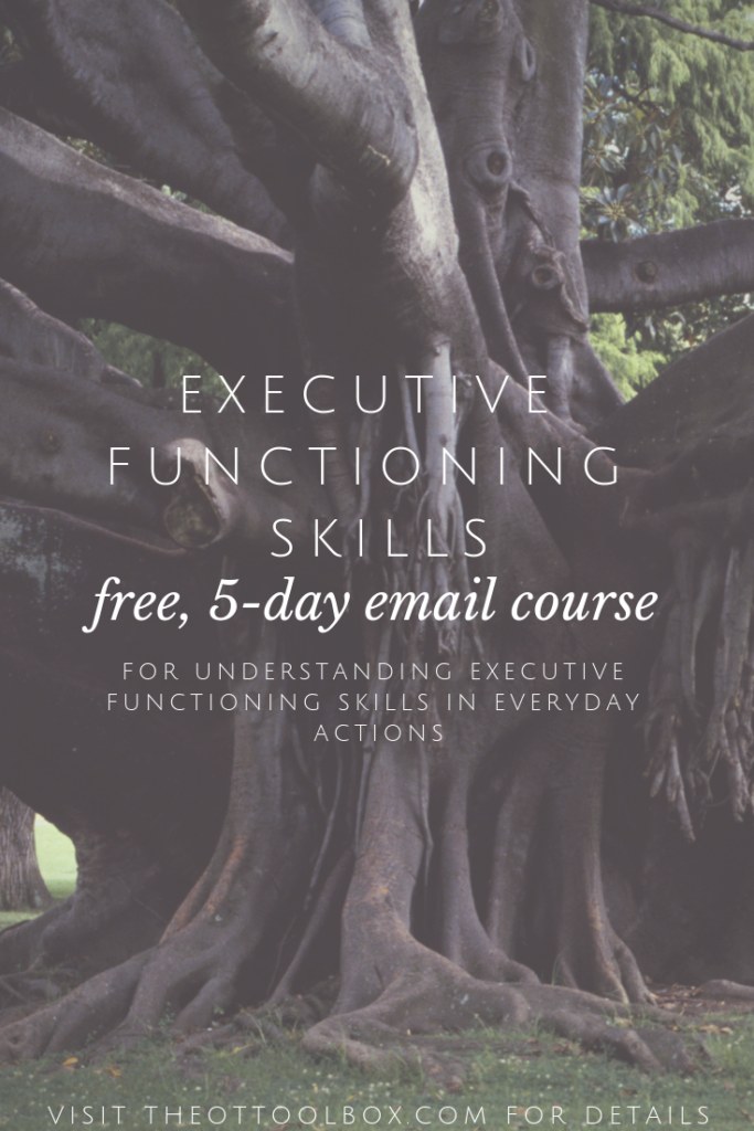 Take this free executive functioning skills course to understand self-control, attention, working memory, and more.