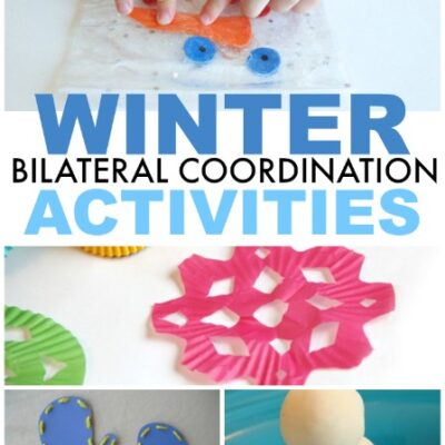 Winter Bilateral Coordination Activities
