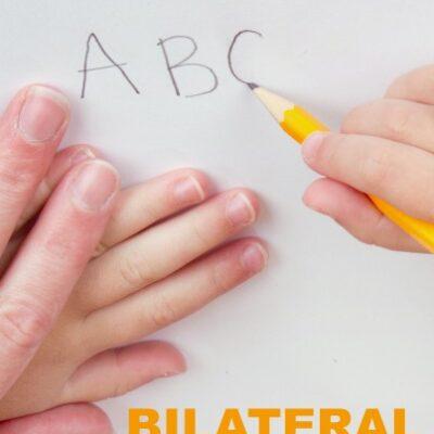 Bilateral Integration Activities