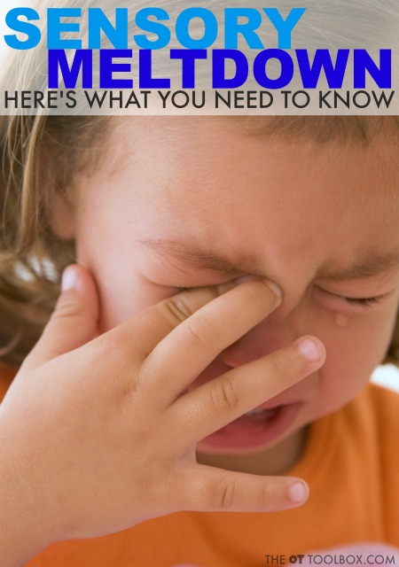 What is a sensory meltdown and how to tell if a child's behaviors and actions are a sensory meltdown or a tantrum