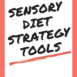 sensory lifestyle sensory diet strategy workbook