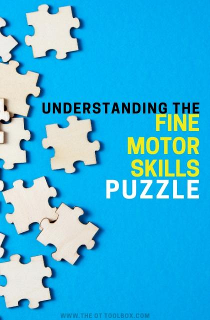 Understand fine motor skills and how each motor skill impacts function.
