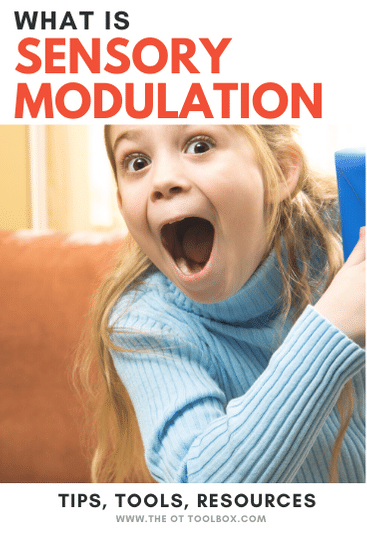 Sensory modulation information including what is sensory modulation and how to help.