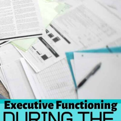 Executive Functioning in School