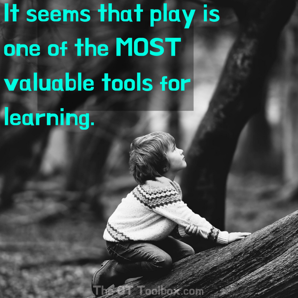 It seems that play is one of the most valuable tools for learning.