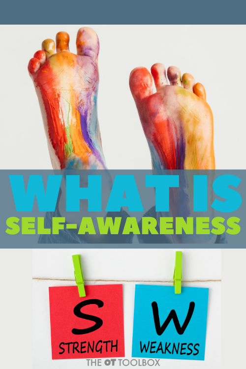 Self awareness is a metacognitive skill needed for higher level thinking