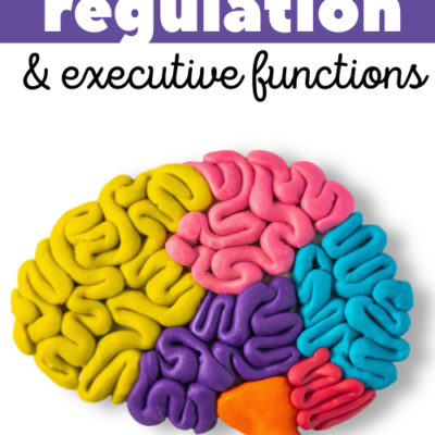 Emotional Regulation and Executive Function