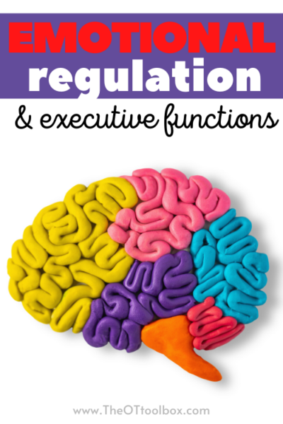 emotional regulation and executive functioning skills are connected.