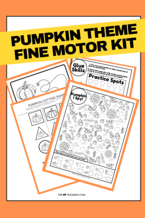 Pumpkin activity kit