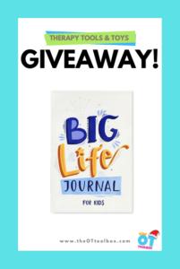 Big Life Journal giveaway