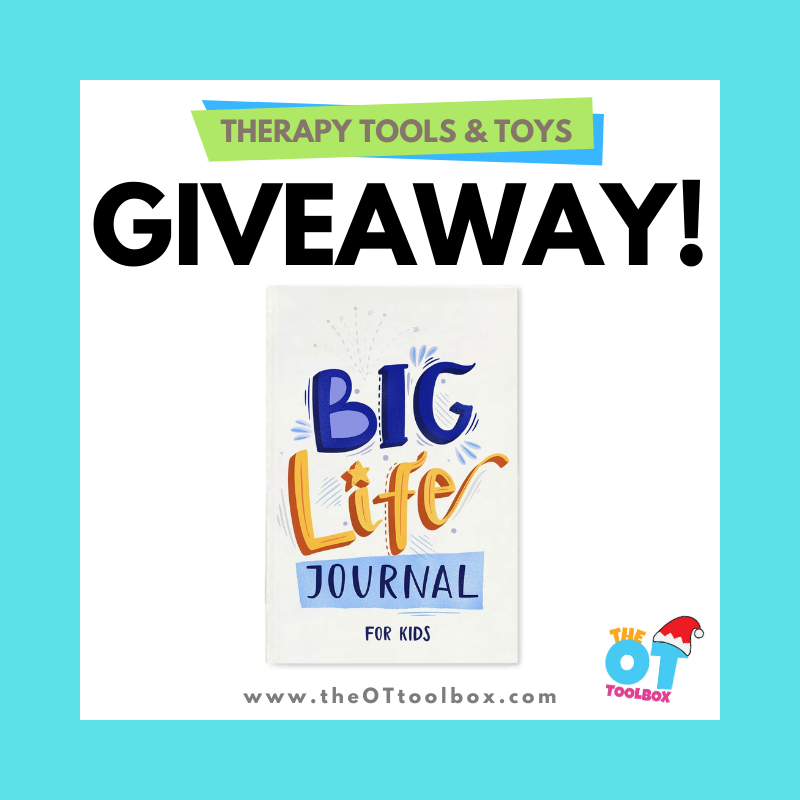 Big life journal giveaway