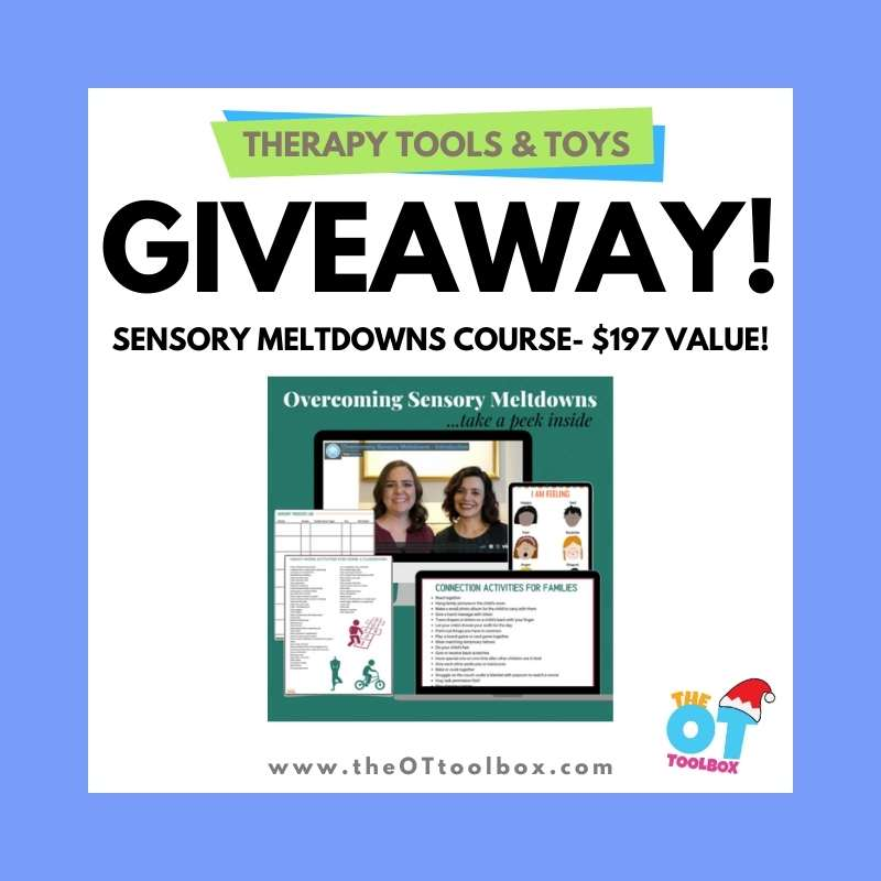 sensory meltdowns course
