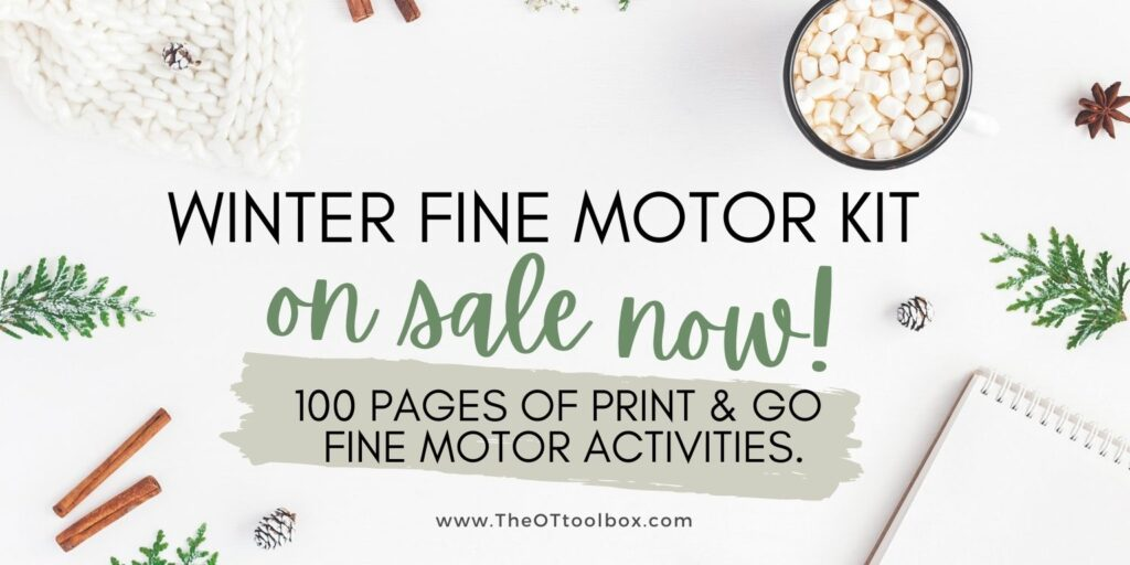 Winter Fine Motor Kit sale