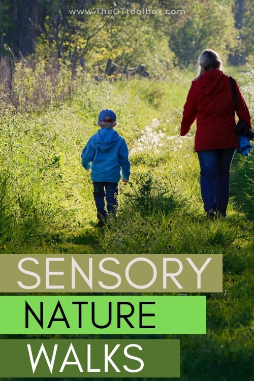 Nature walk ideas for sensory based family walks.
