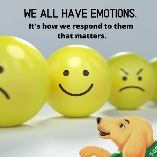 We all have an emotional vocabulary. Preschoolers need help to learn emotional terms.