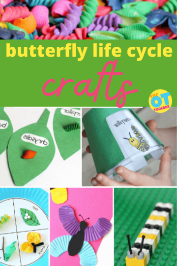 butterfly life cycle crafts and activities