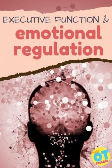 executive function and emotional regulation skills
