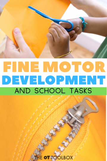 fine motor development and school tasks